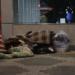 【画像】青森でとんでもないホームレスが目撃される